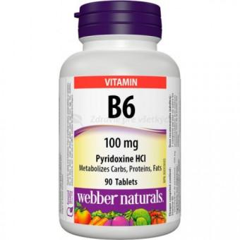 Vitamín B6 (pyridoxín)
